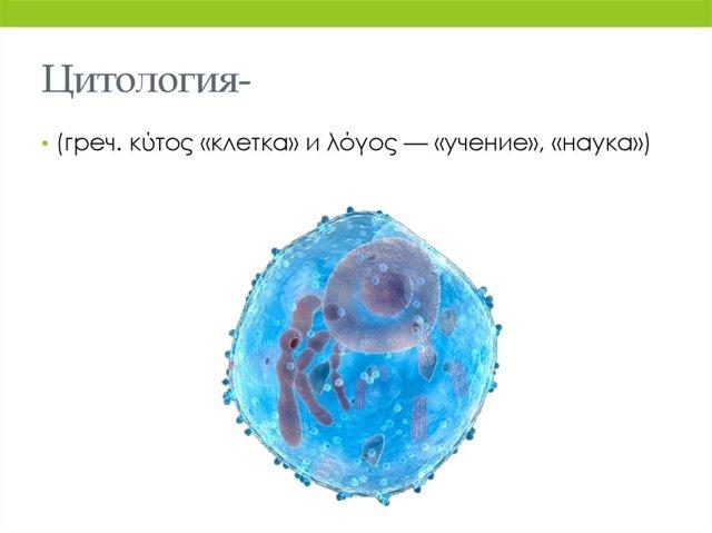 Как расшифровать результат гистологии