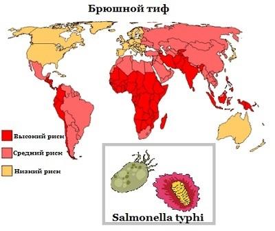 Какой интервал должен быть между прививками от гепатита, тифа, дифтерии?