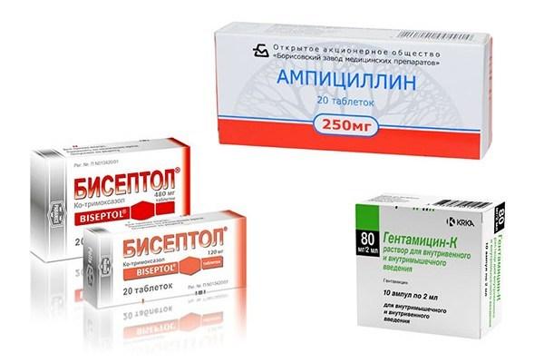 Симптомы листериоза у человека, чем опасен листериоз у беременных, течение листериоза у новорожденных, диагностика, методы лечения и профилактики
