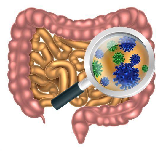 Как принимать антибиотики: как подобрать антибиотик, чем запивать антибиотик, как долго пить антибиотик