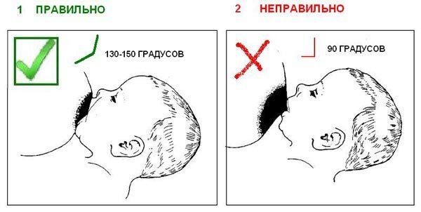 Раннее прикладывание к груди новорожденного: польза молозива, техника прикладывания