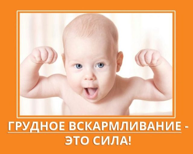 Рацион ребенка в год: питание ребенка в 1 год и режим кормления ребенка в год