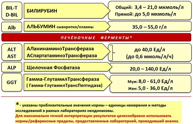 Печеночные пробы: расшифровка, нормы, причины повышенных печеночных проб